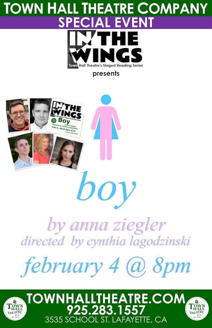 Anna Ziegler's Boy