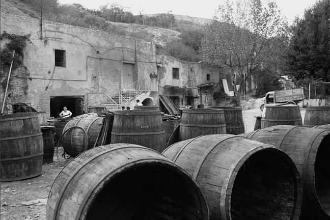The cellars of Monte Testaccio.