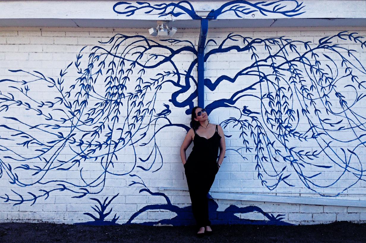 Day 44- Tucson, AZ   More Tucson street art. Love this wall!