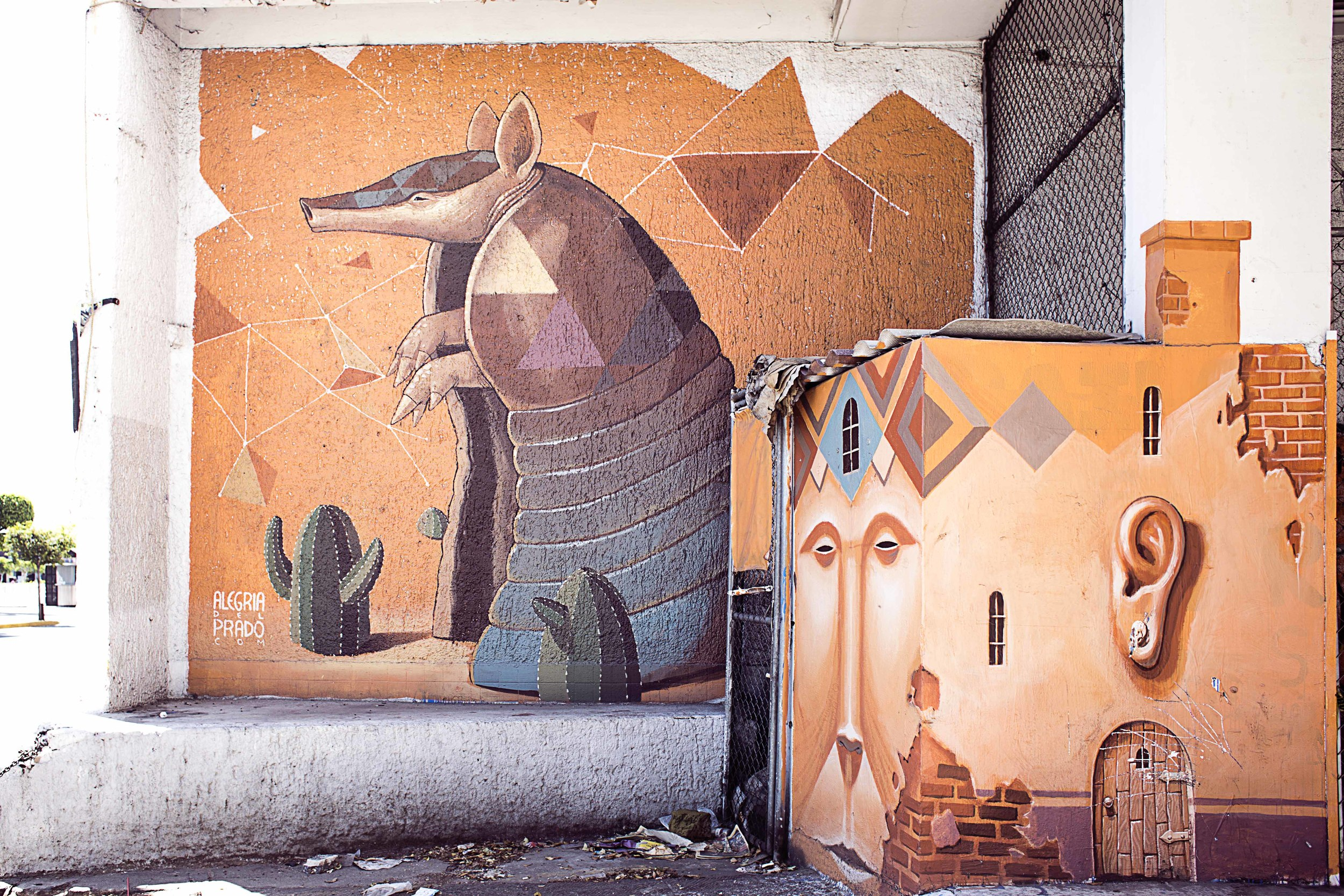 Day 62 - Guadalajara, Jalisco, Mexico   One of the many beautiful murals found in Guadalajara. From Alegria del Prado.