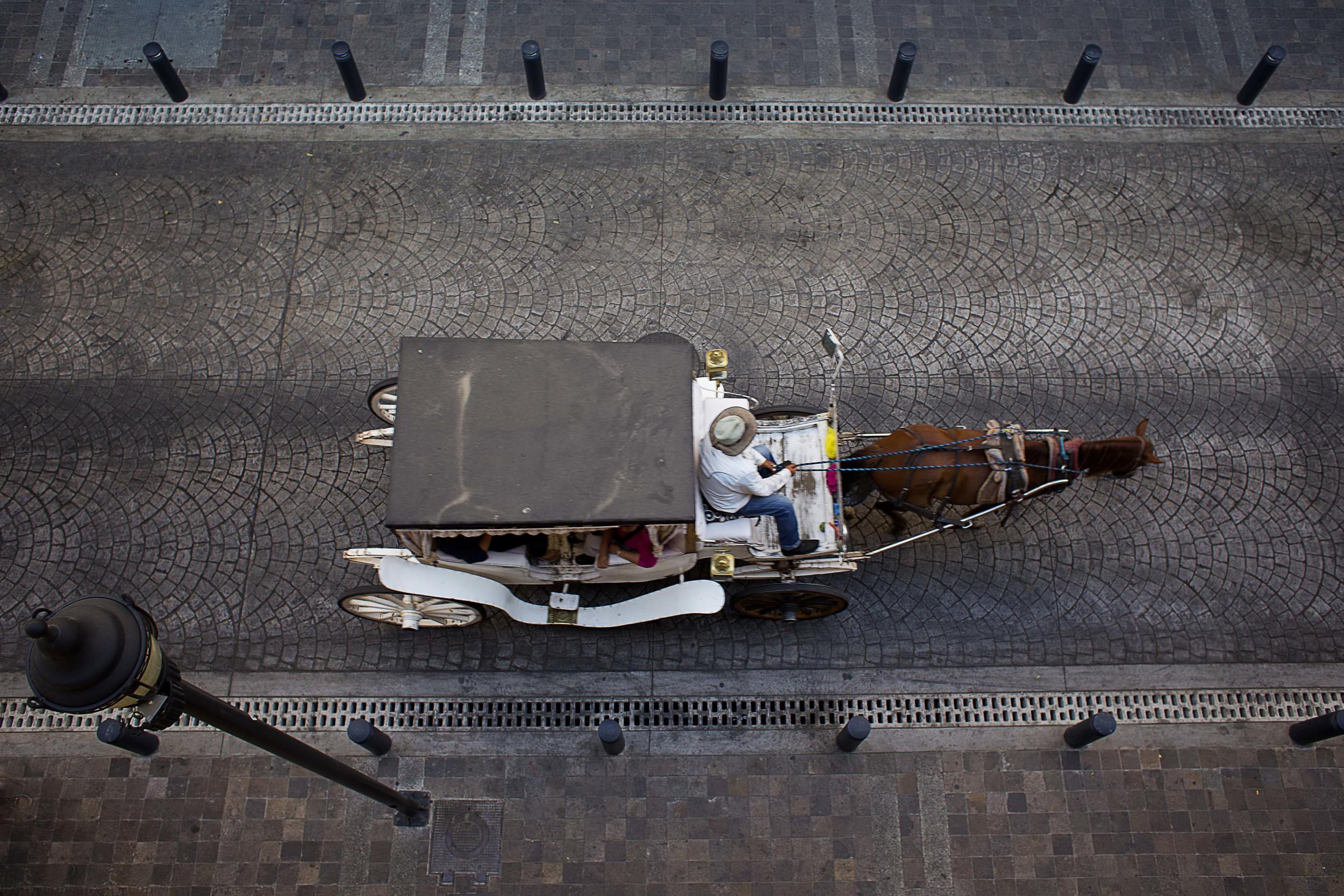 Day 73 - Guadalajara, Jalisco, Mexico   Carriage ride in the Centro Historico.