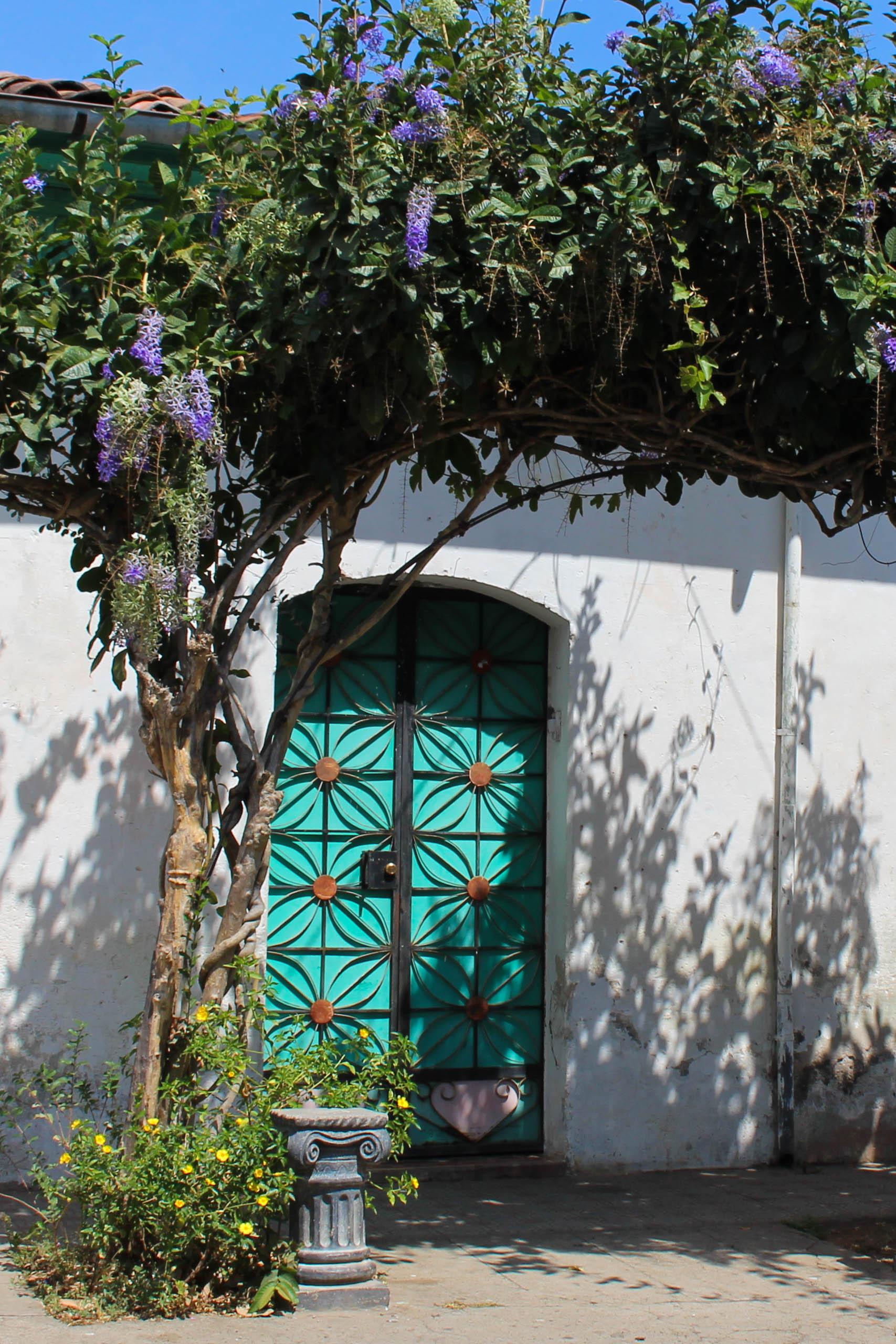 El tunco-door way green-NAtalieNehlawi.jpg