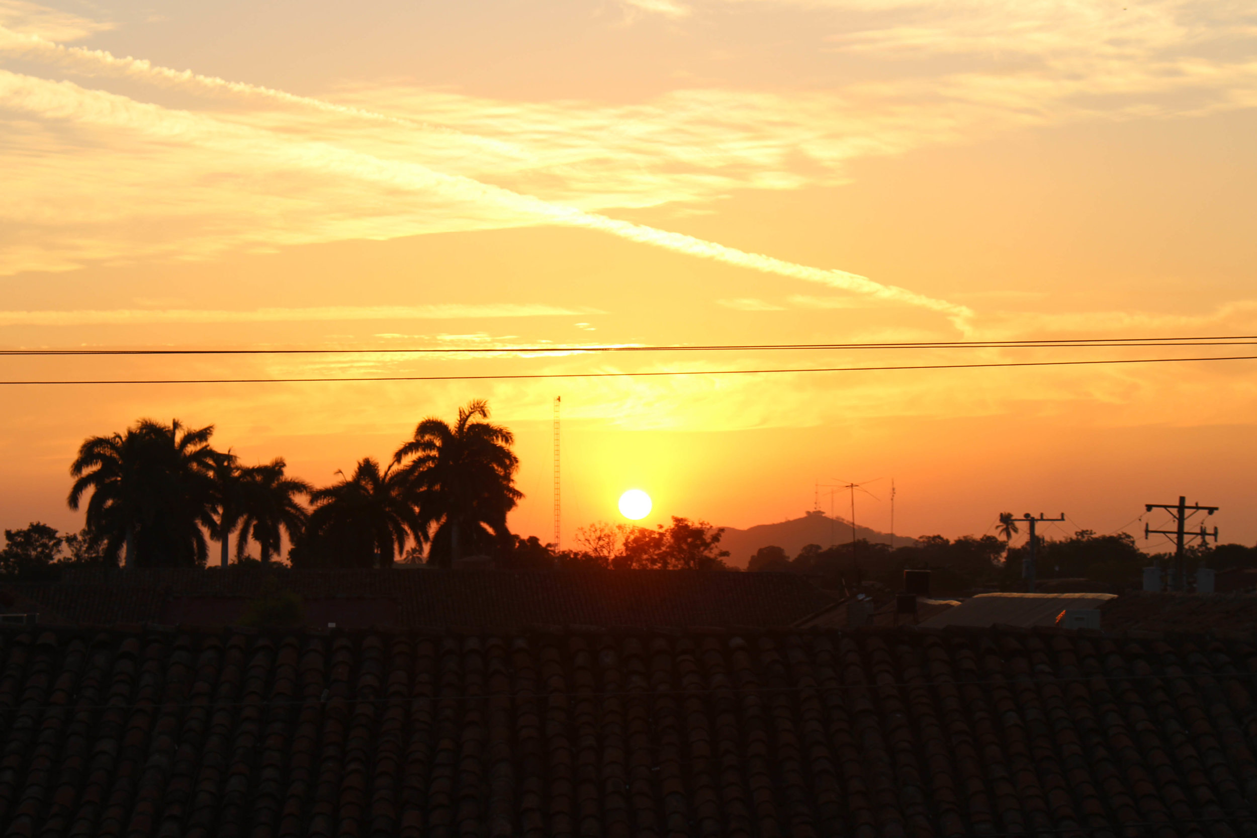 leon-sunset-NatalieNehlawi.jpg