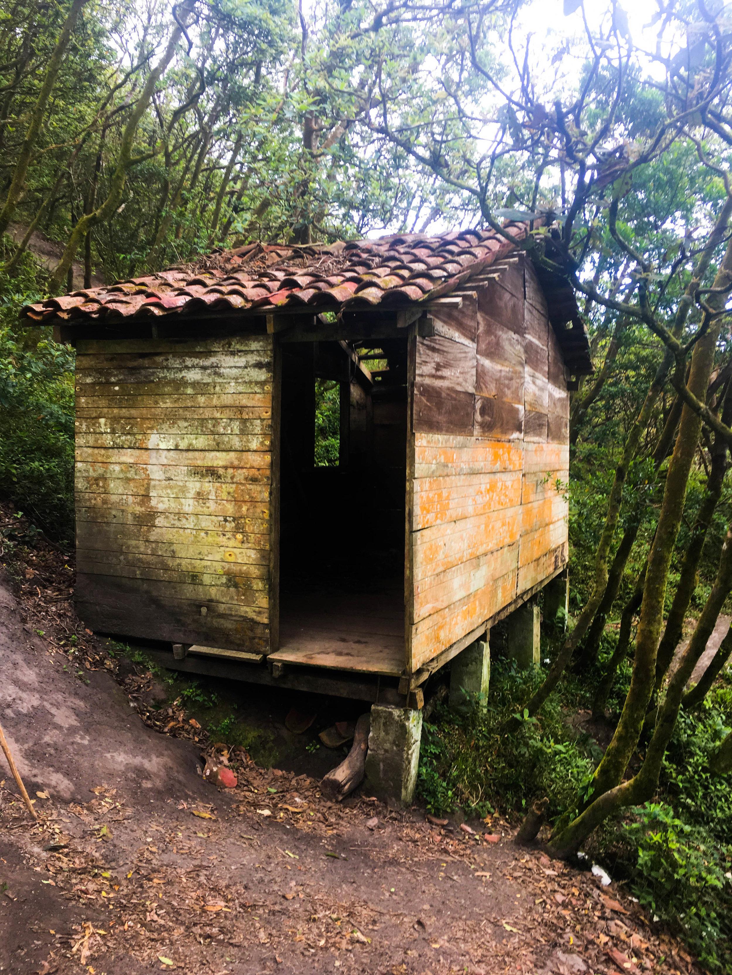 Ometepe- shelter-NatalieNehlawi.jpg