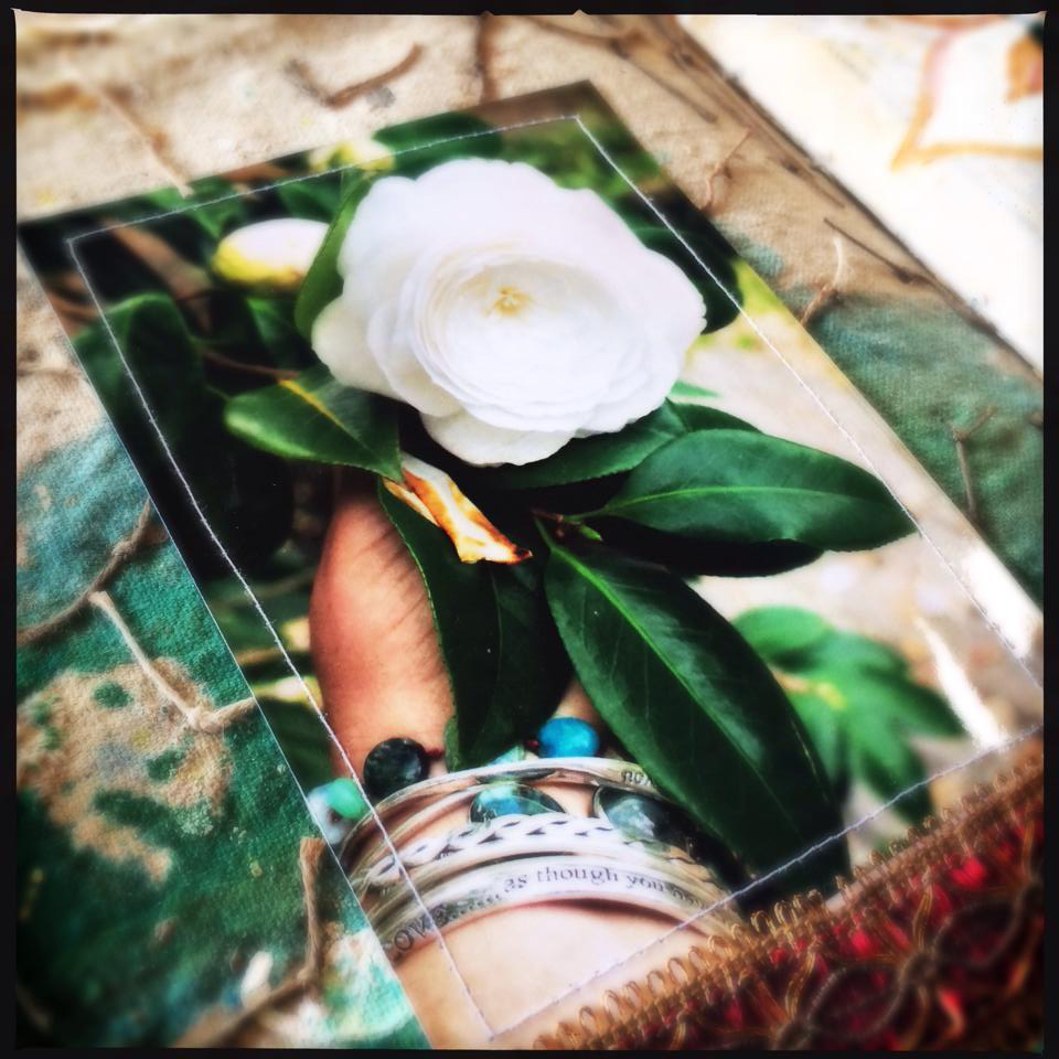 Visual journal - Galia Alena