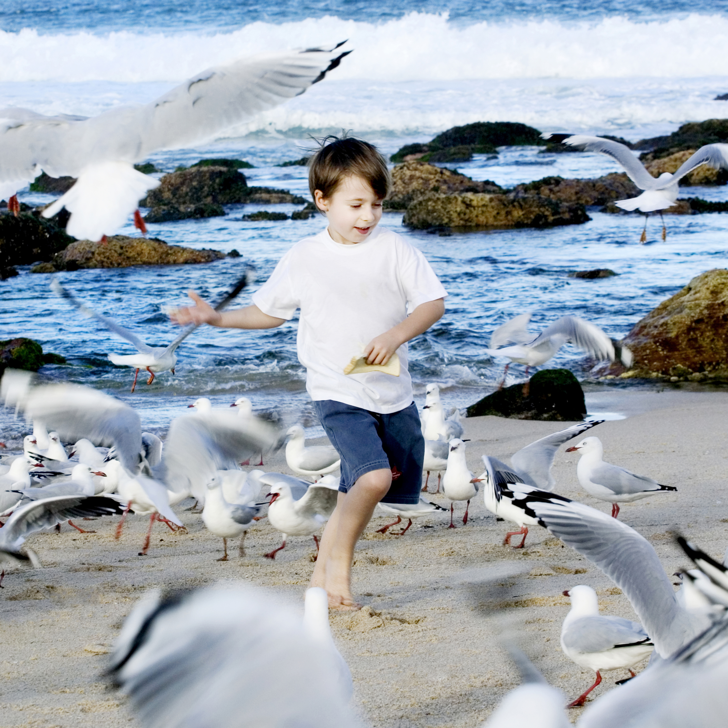 Boy with seagulls photo