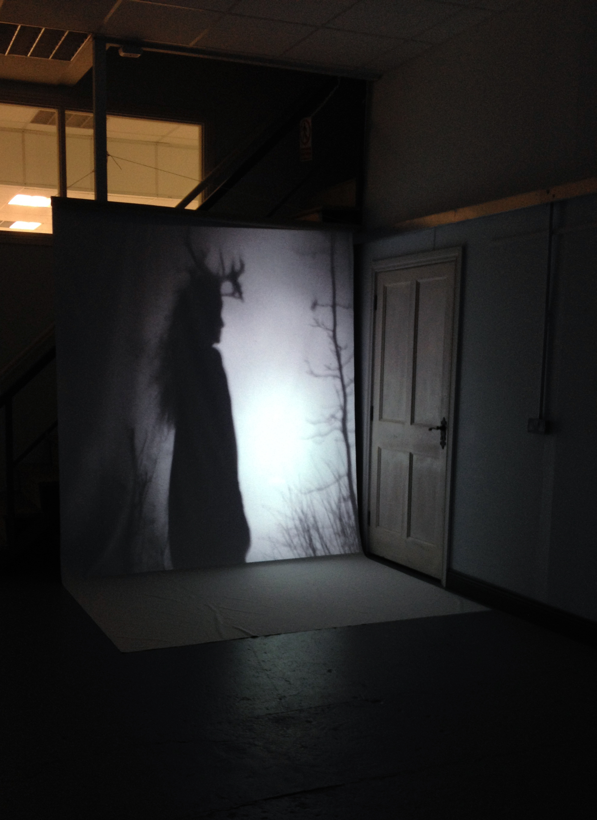 Testing video projection mapping for installation, Spring 2019