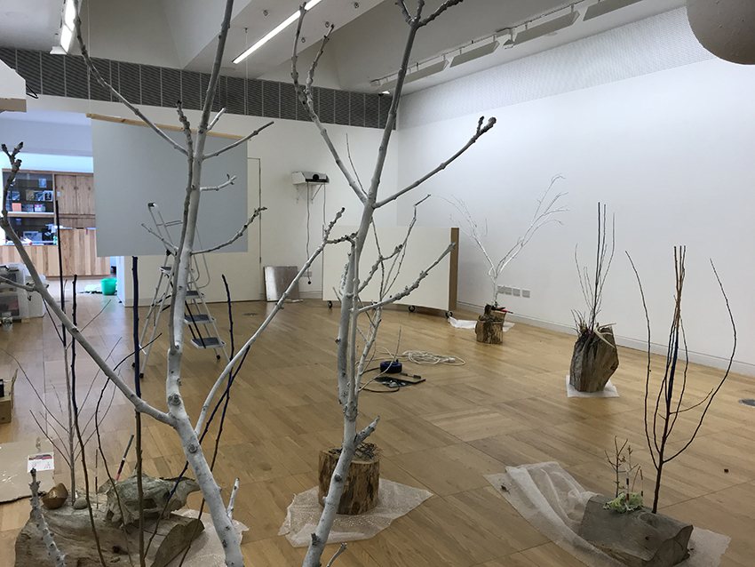 Exhibition installation in The New Gallery of the Luan, June 2019