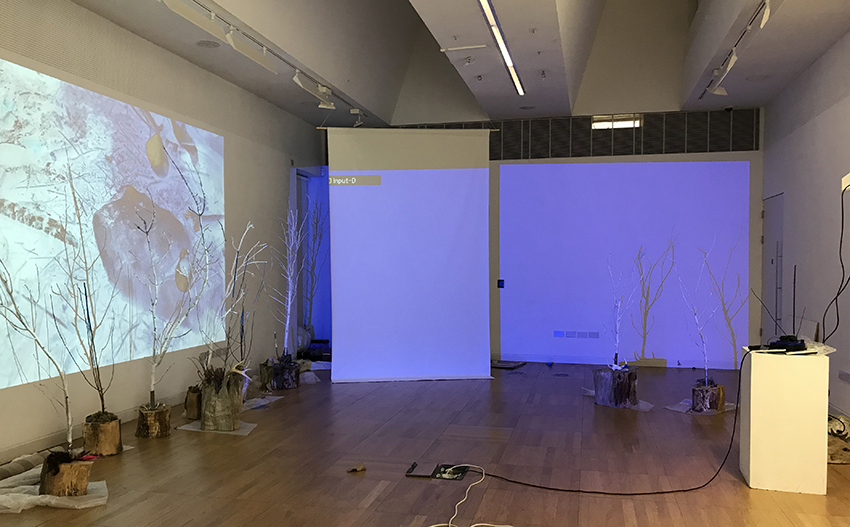 Setting up the space for mapping.