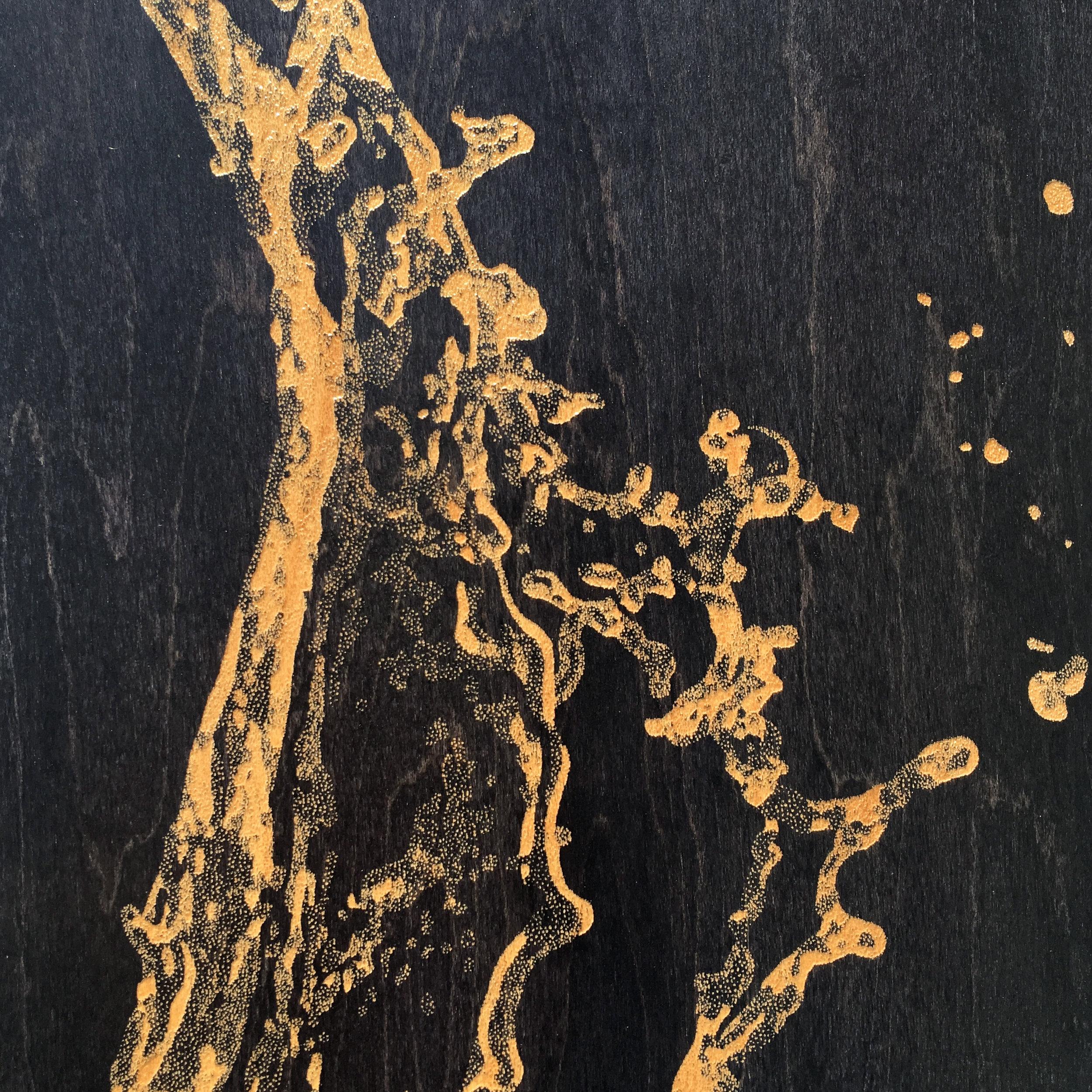 skateboard ilan water drop zoom