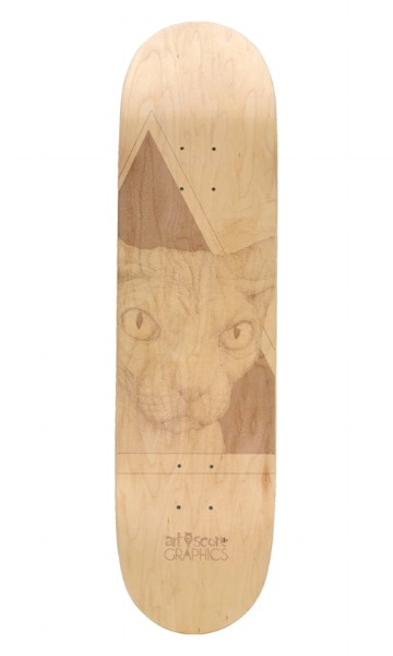artsc0re the cat skateboard