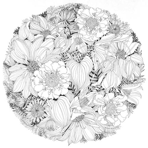 Noir et blanc pur avec des détails 🤔