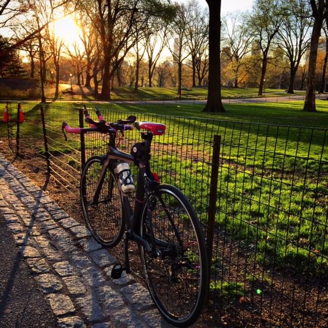 Barb enjoying the sunrise over Central Park.