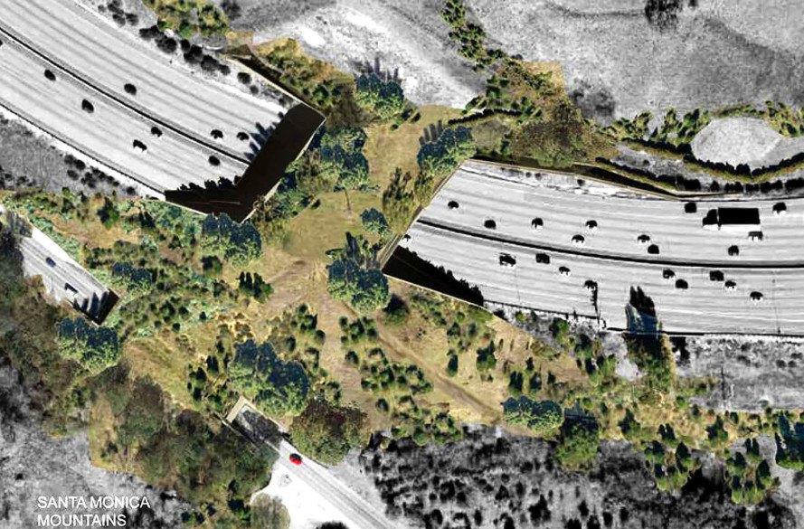 wildlife-overpass1-889x585.jpg