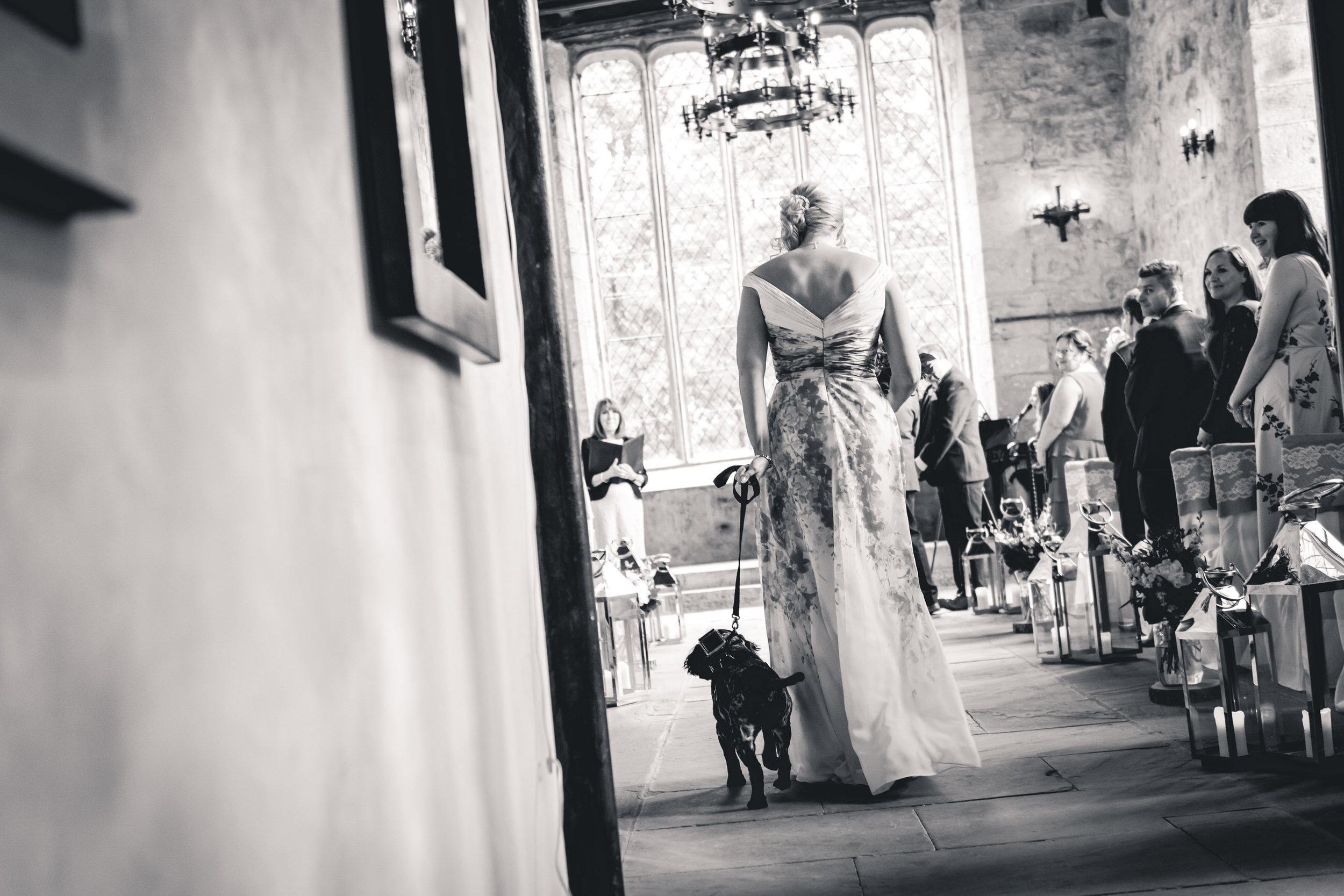 dog-wedding-leeds-wedding-photographer1.jpg