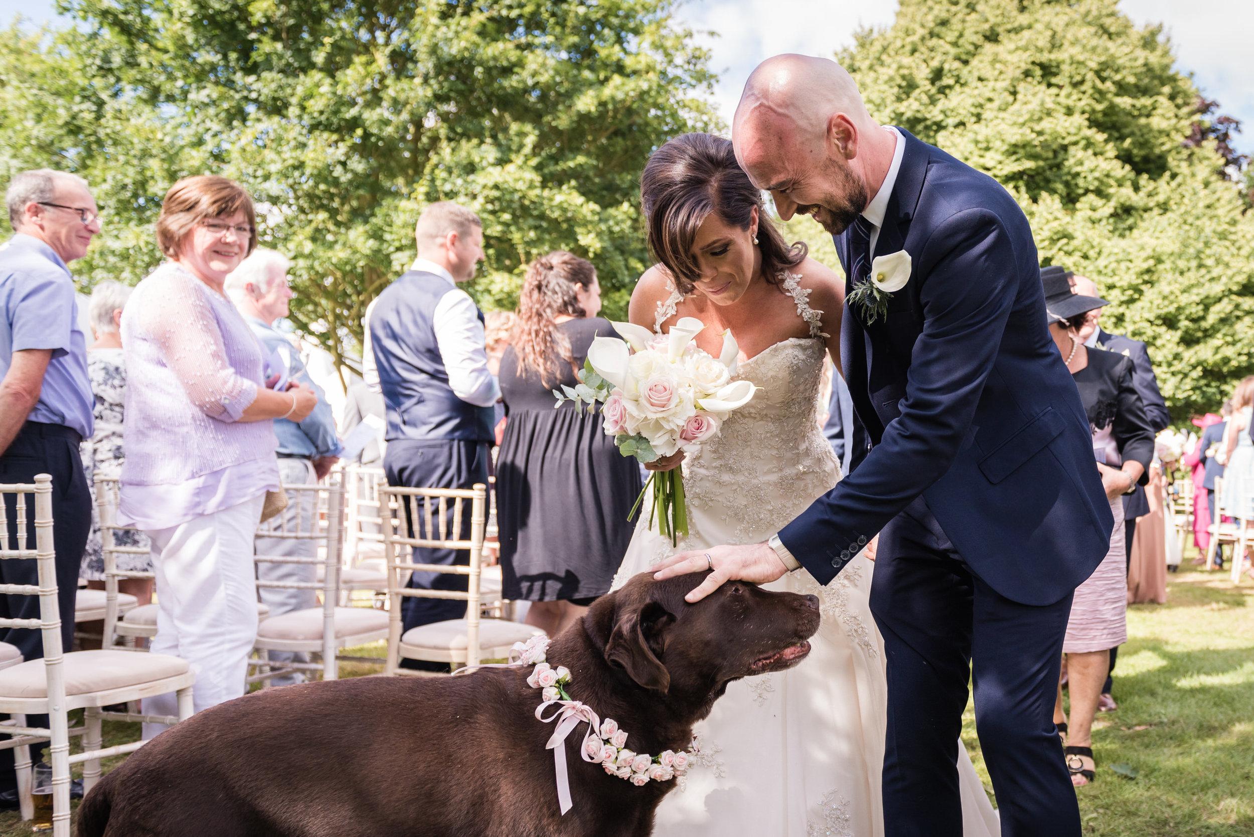 dog-wedding-leeds-wedding-photographer4.jpg