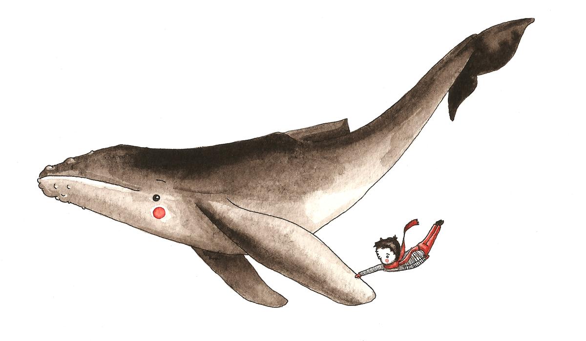 boy & whale