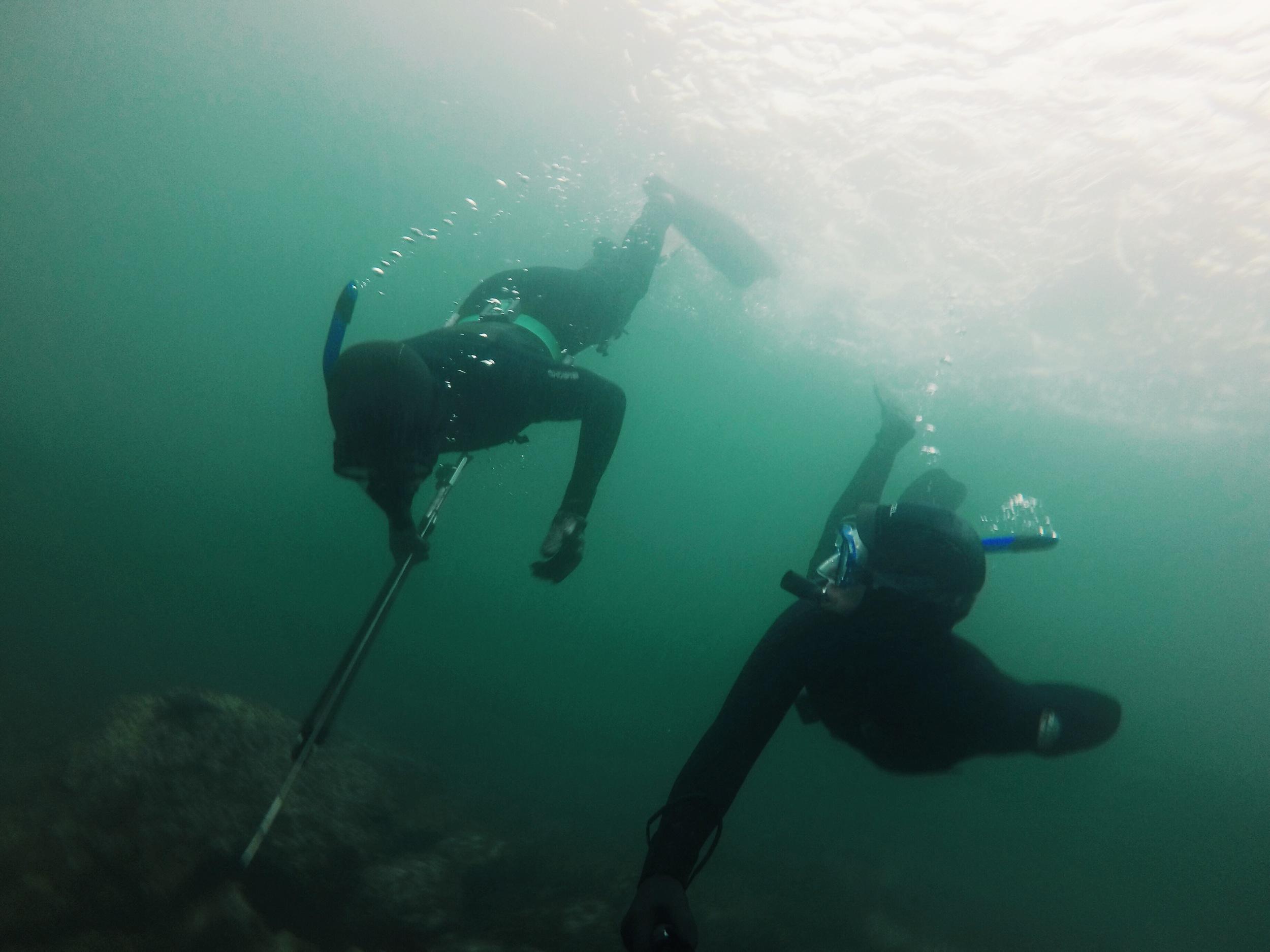 Spearfishing Amelia Wachtin