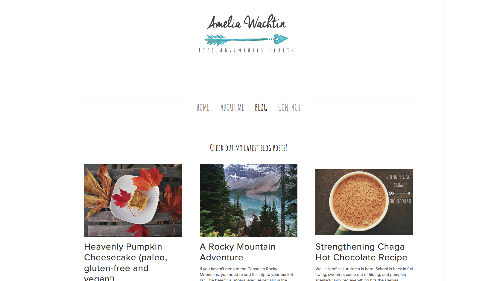 amelia wachtin blog
