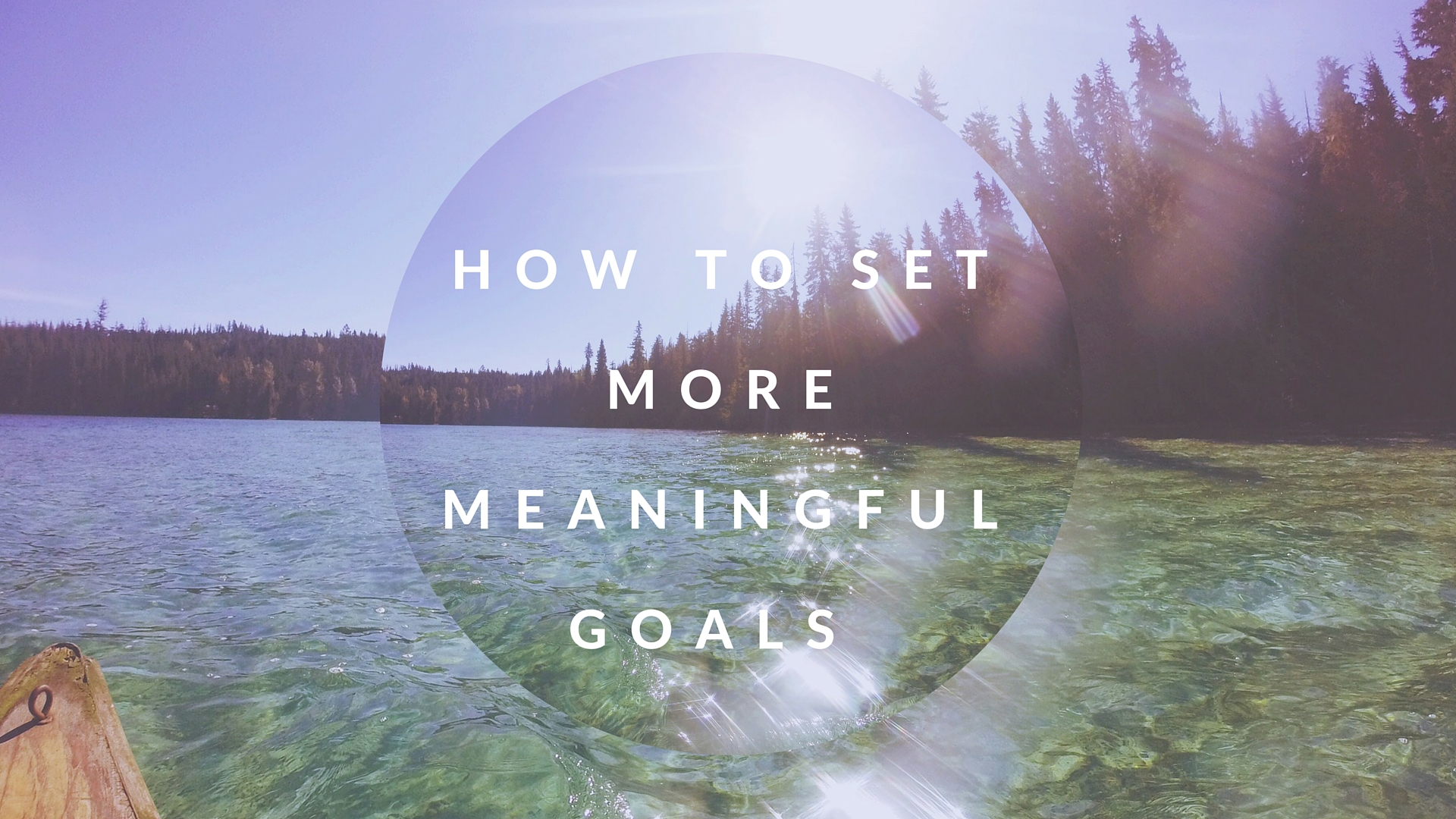 amelia wachtin goals