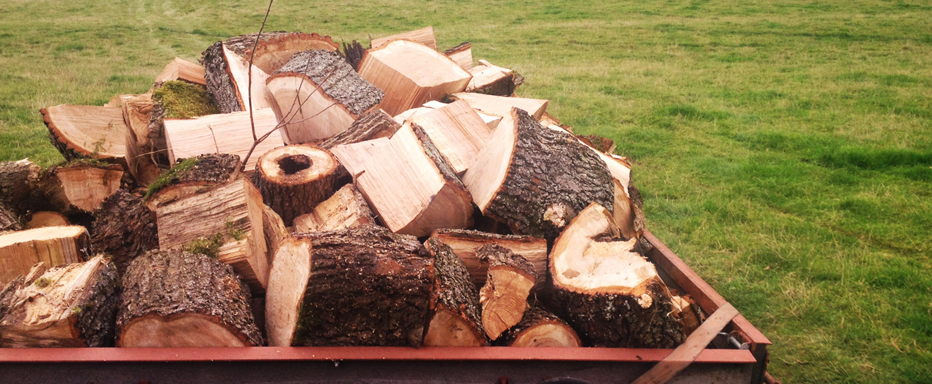 Sustainably sourced hardwood firewood, Kentchurch Estate, Herefordshire.