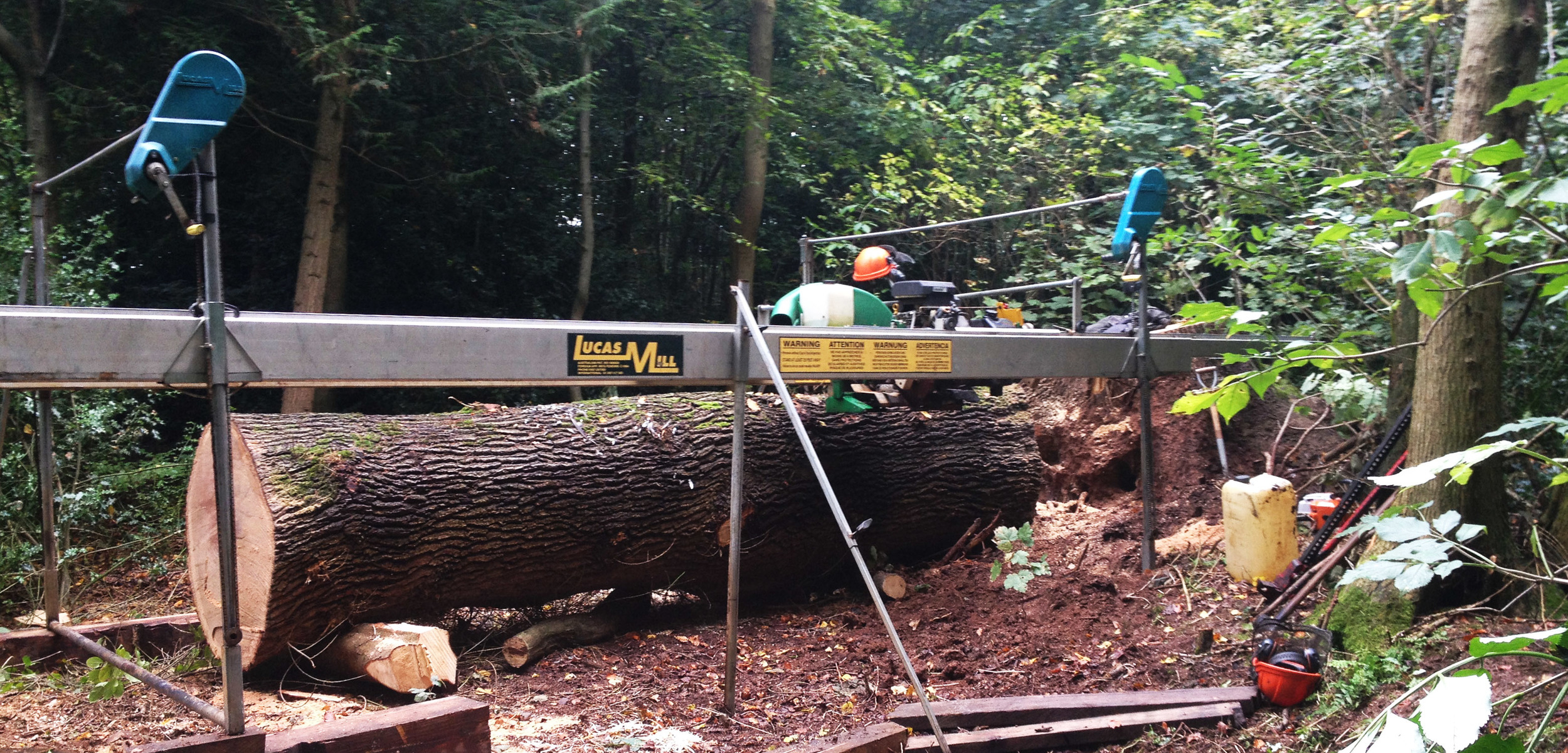 Milling large oak windfall on-site in the wood.
