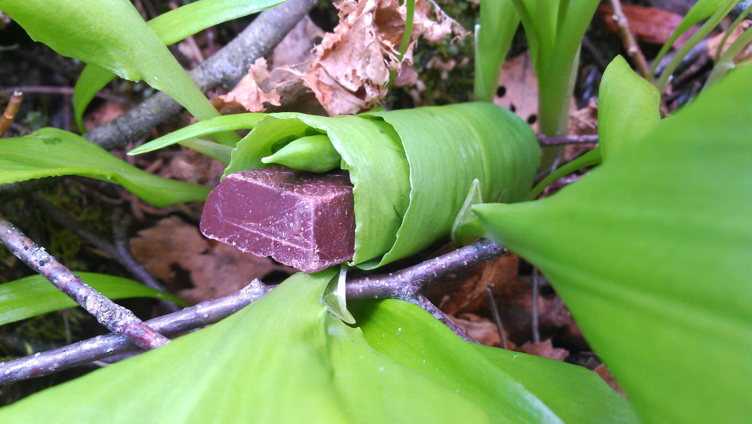 ramsløk sjokolade