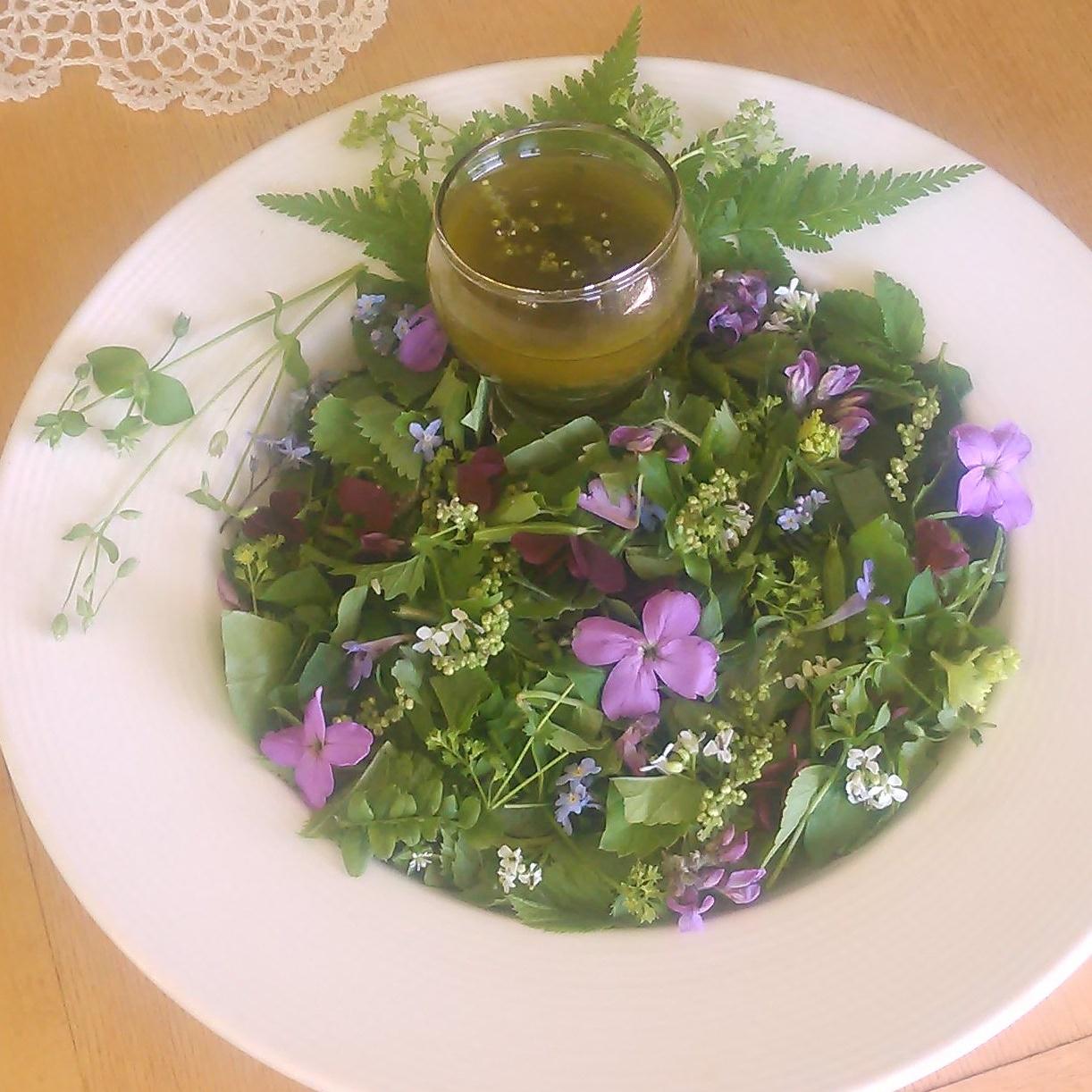 Salat fra hagen på Stabekk