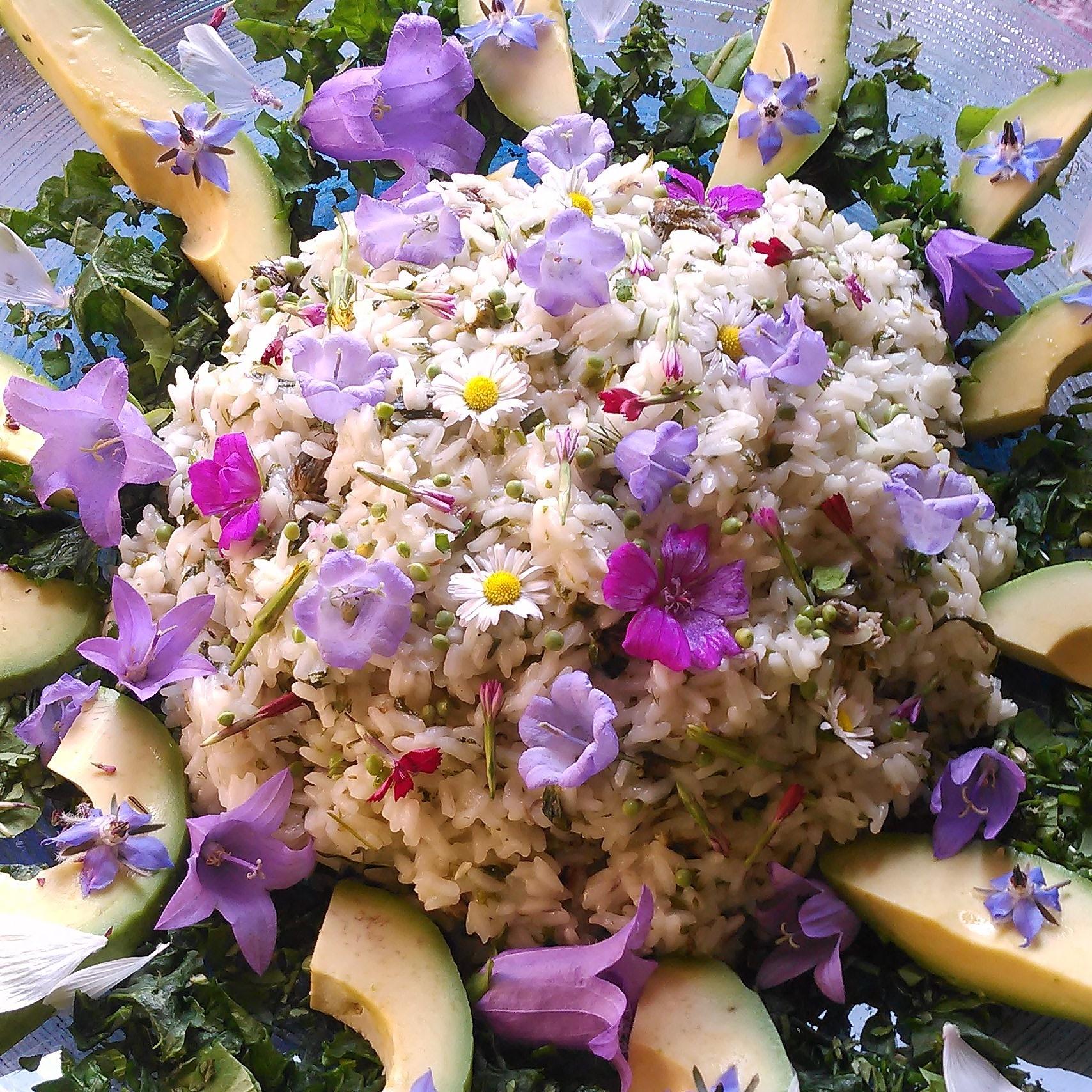 Blomstrende risotto fra Siris Ville Have