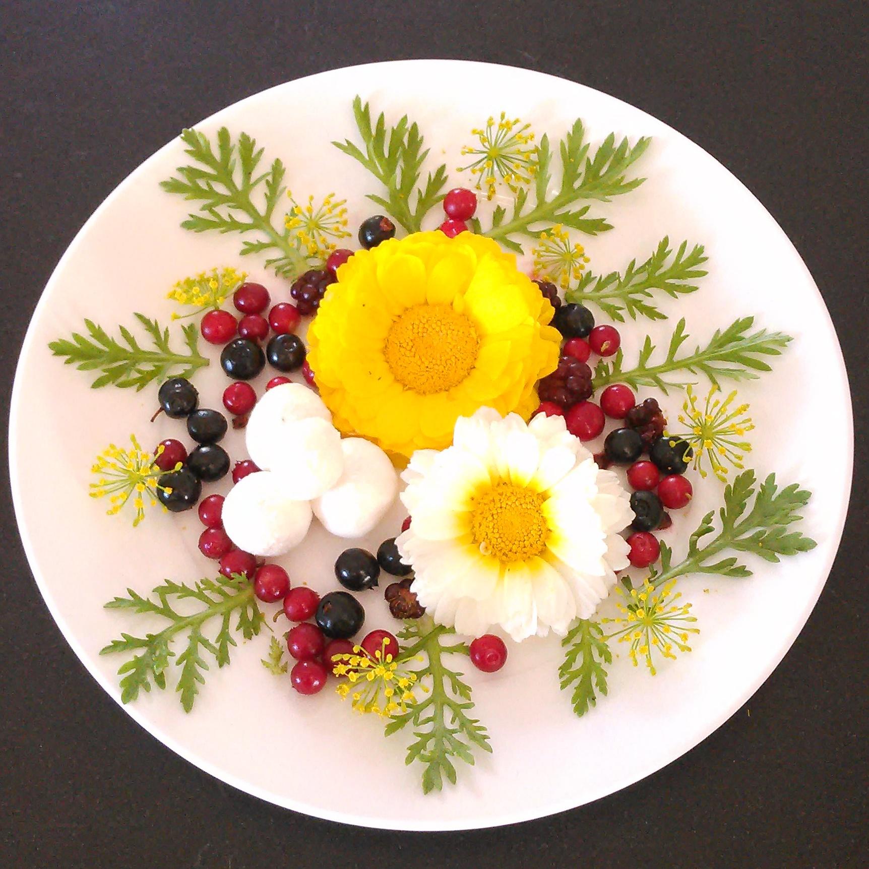 En liten salatrett etter bærtur i Drøbak med blåbær,tyttebær,blokkebær,bjørnebær blader og blomster av shinguku og dill fra Dysterjordet andelslandbruk og noen chevrekuler. Dette ble spist sammen med deilig spekeskinke og knekkebrød. Bær fra skogen løfter alle retter opp i himmelen :)