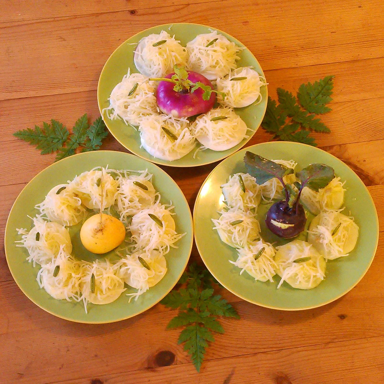 Reven nepe, reddik og knutekål krydret med spanskkjørvelrot dressing av olivenolje og kombuchaeddik av hylleblomst og kløver på toppen, frø av spanskkjørvel fra fryseren.