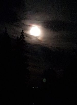 månen.jpg