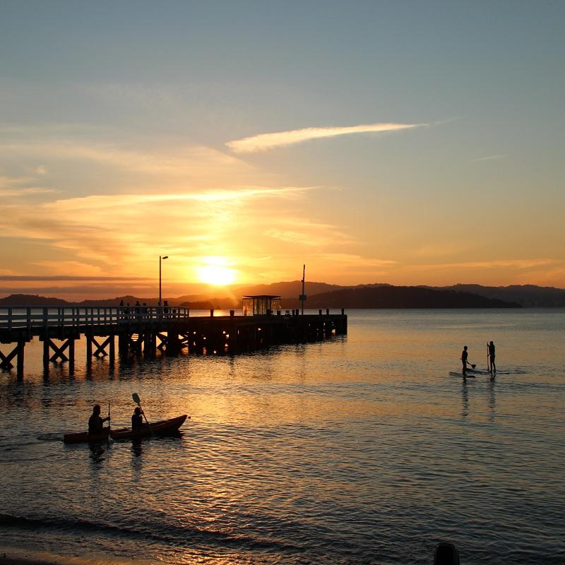 SUPS AND KAYAKS A++ sunset and wharf.jpg