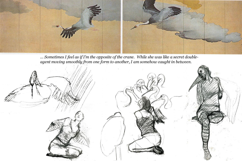CraneWifeSketches.jpg