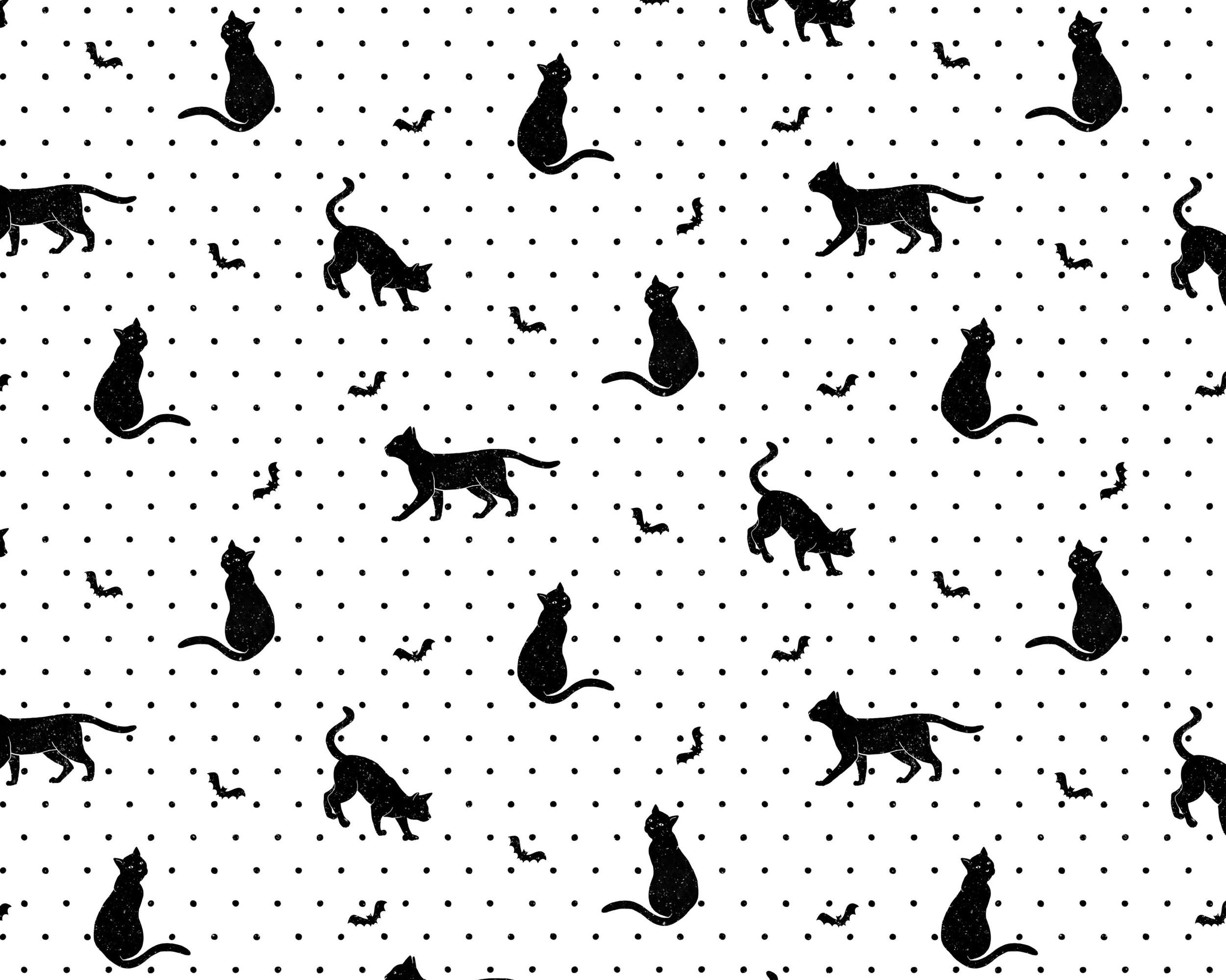 cat and bat.jpg