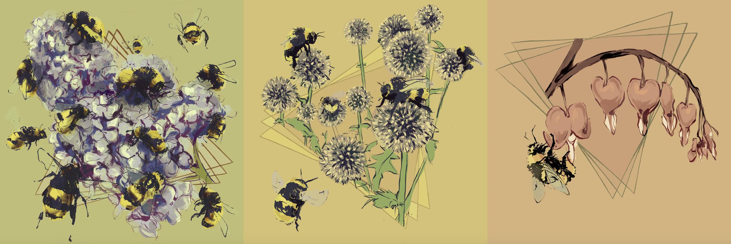 bees_combined.jpg
