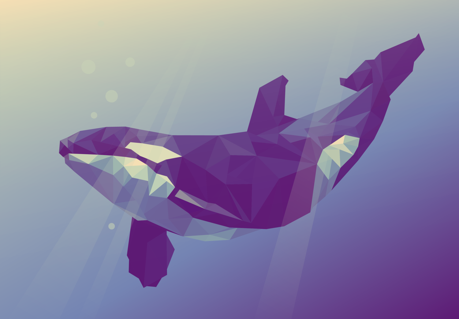 whale+lowpoly.png