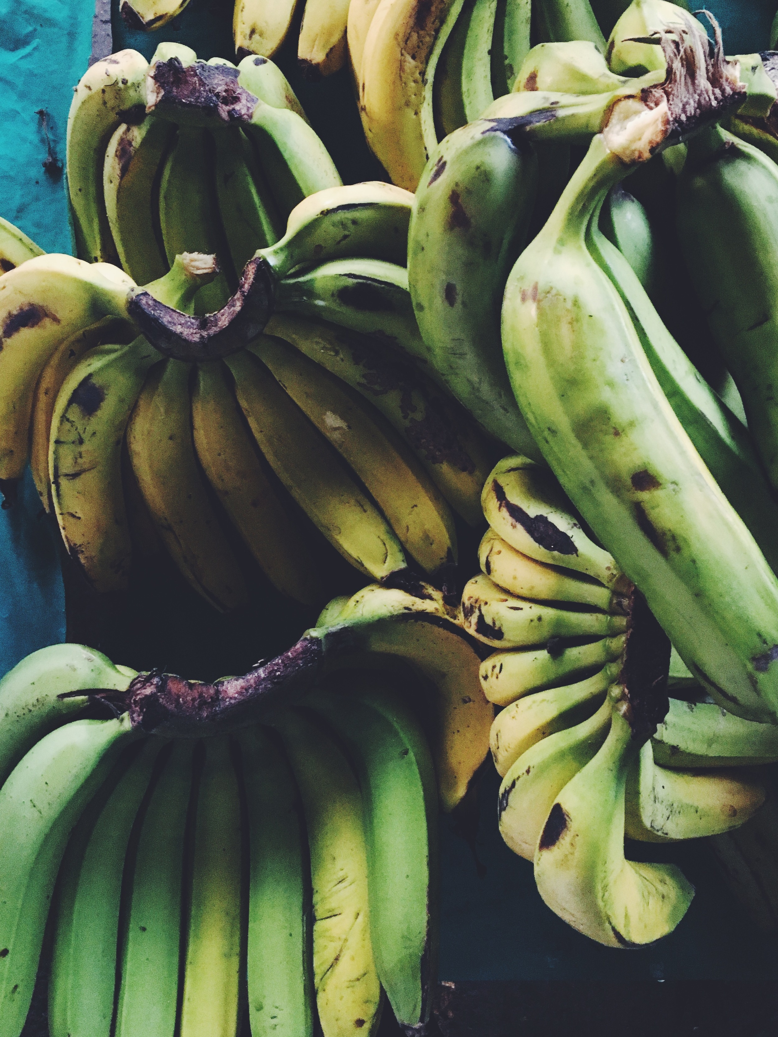 OBELO | Plantains