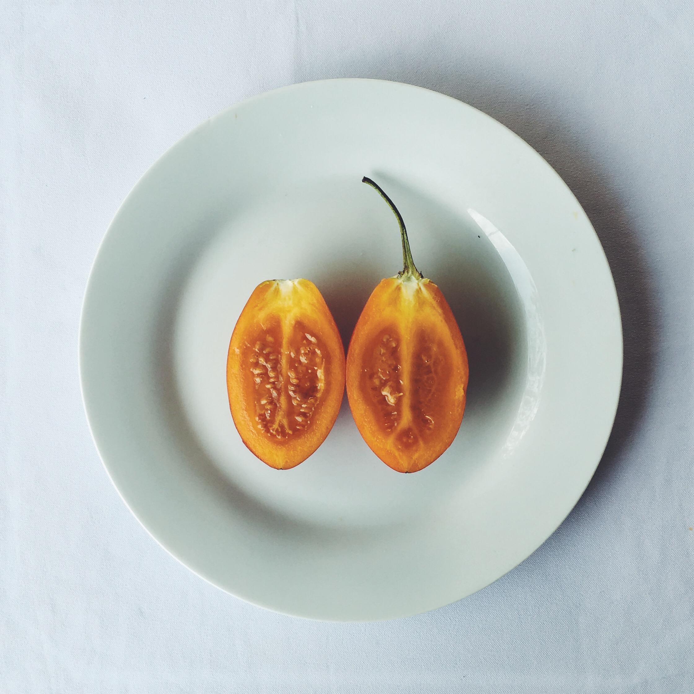 OBELO | Tomate de Arbol