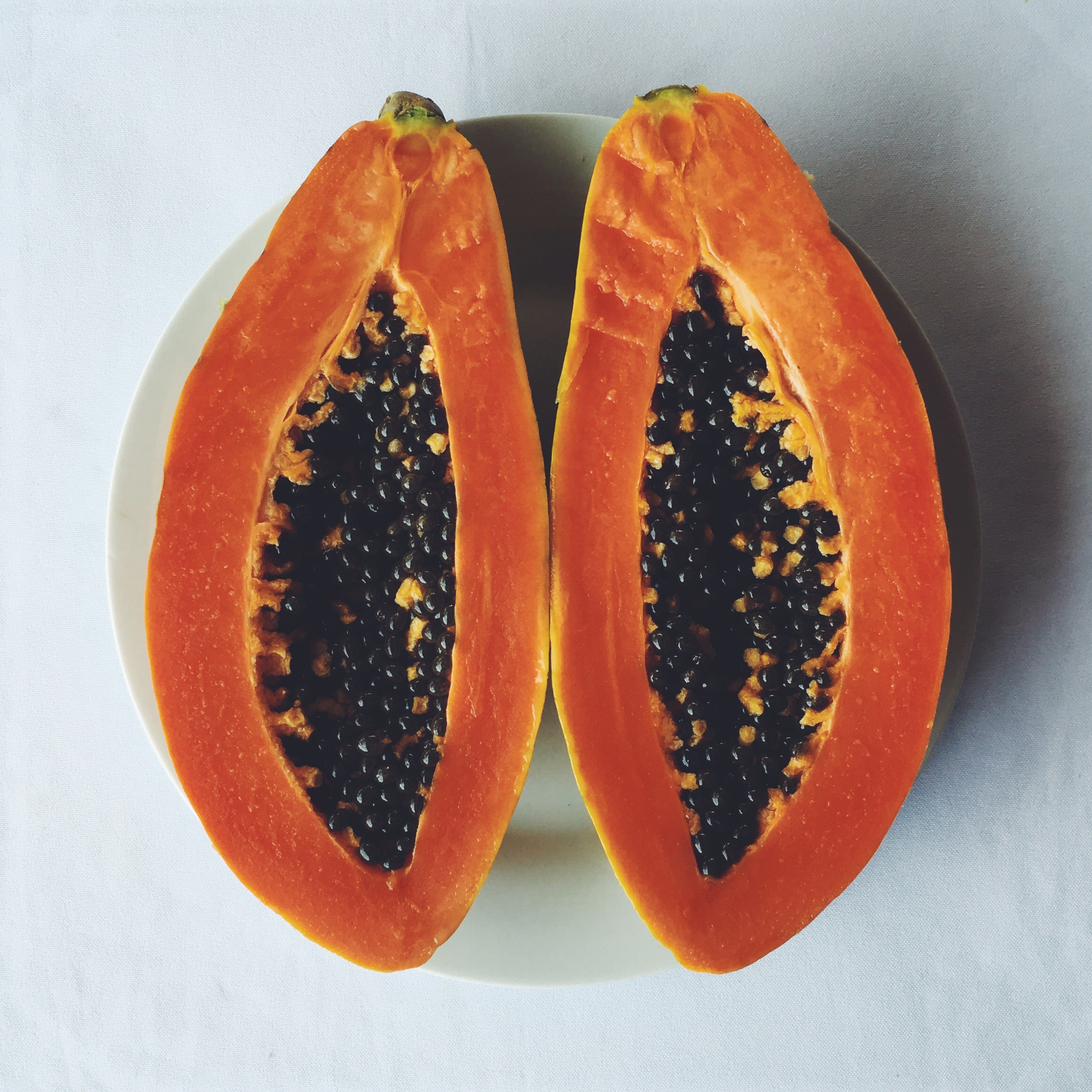 OBELO | Papaya
