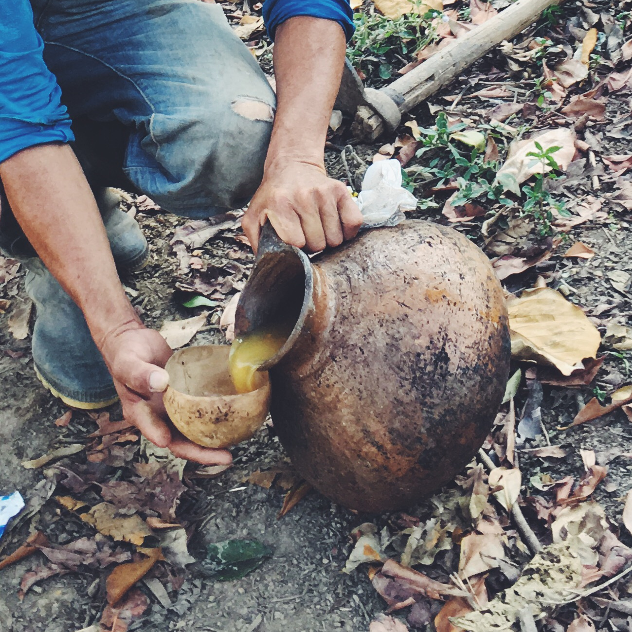 OBELO | Fermented Guarapo