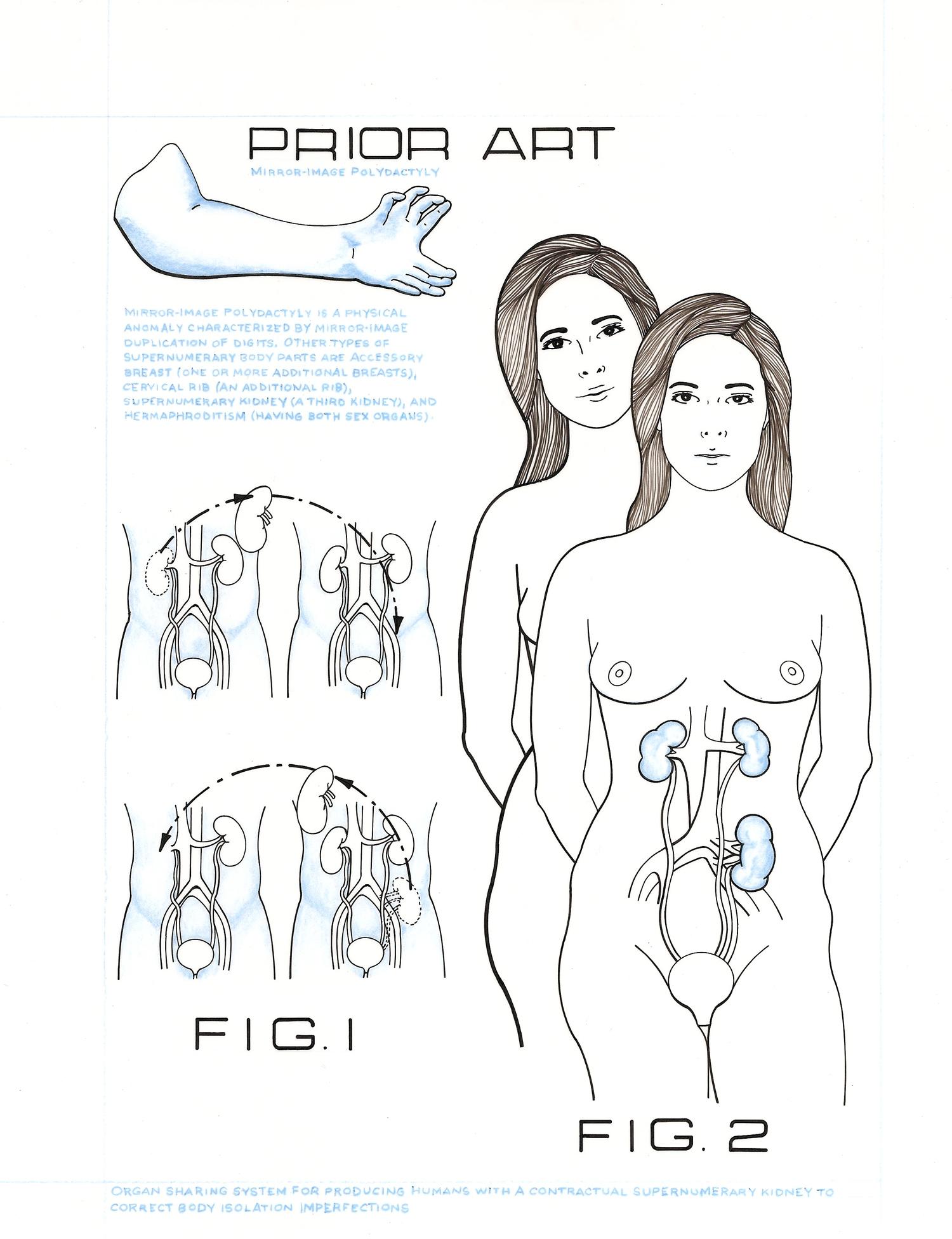 32. CariannaCarianne Drawing 2.jpg
