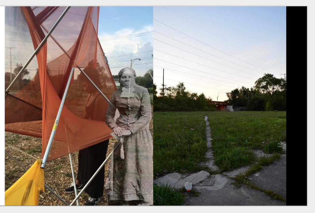 Harriet in the field[1].jpg