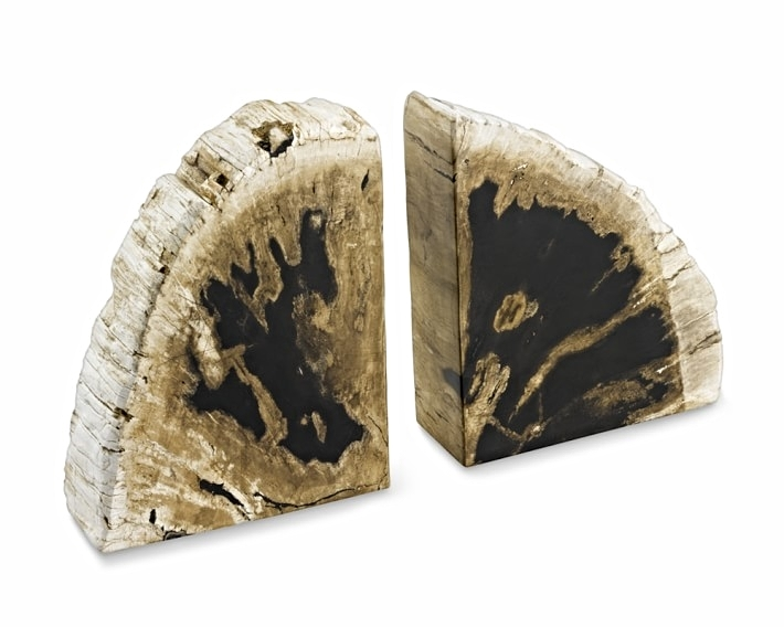 Petrified Wood Bookends $149