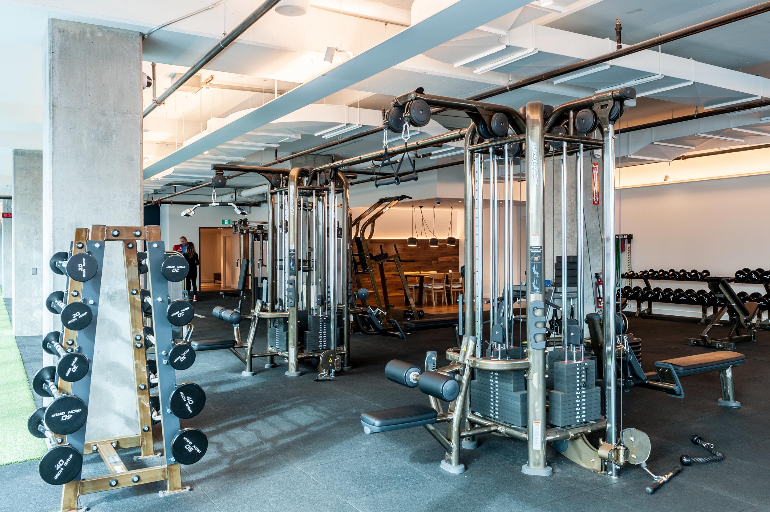 Copy of Front + Berkeley | Gym Floor