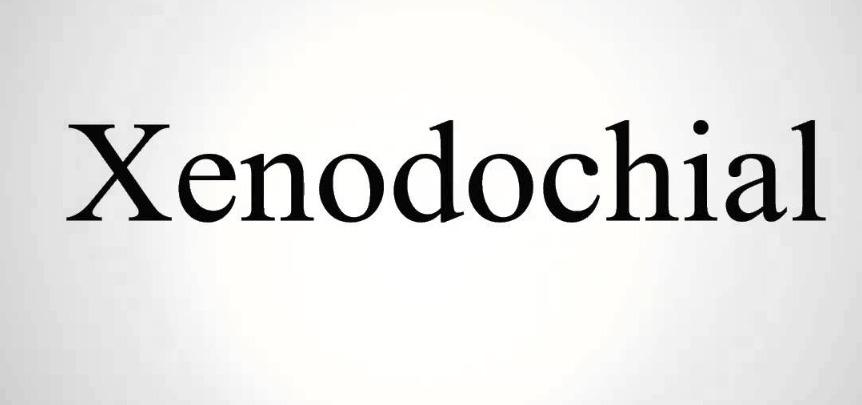 Xenodochial.jpg