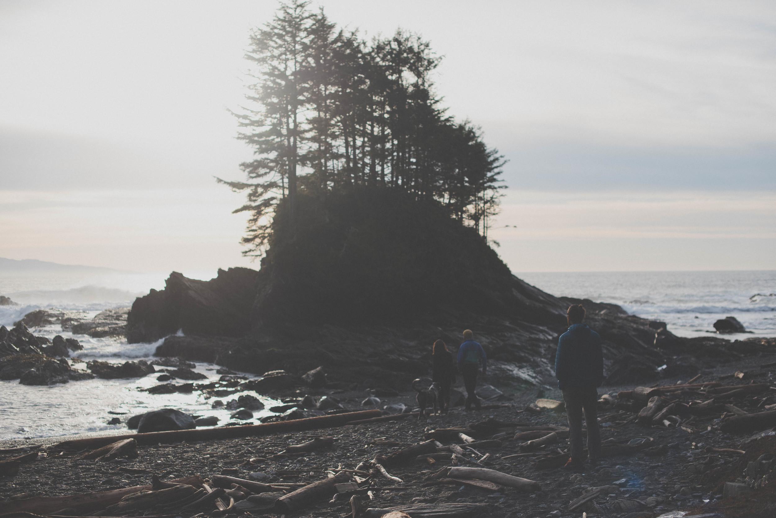 woodsbeach-3325.jpg