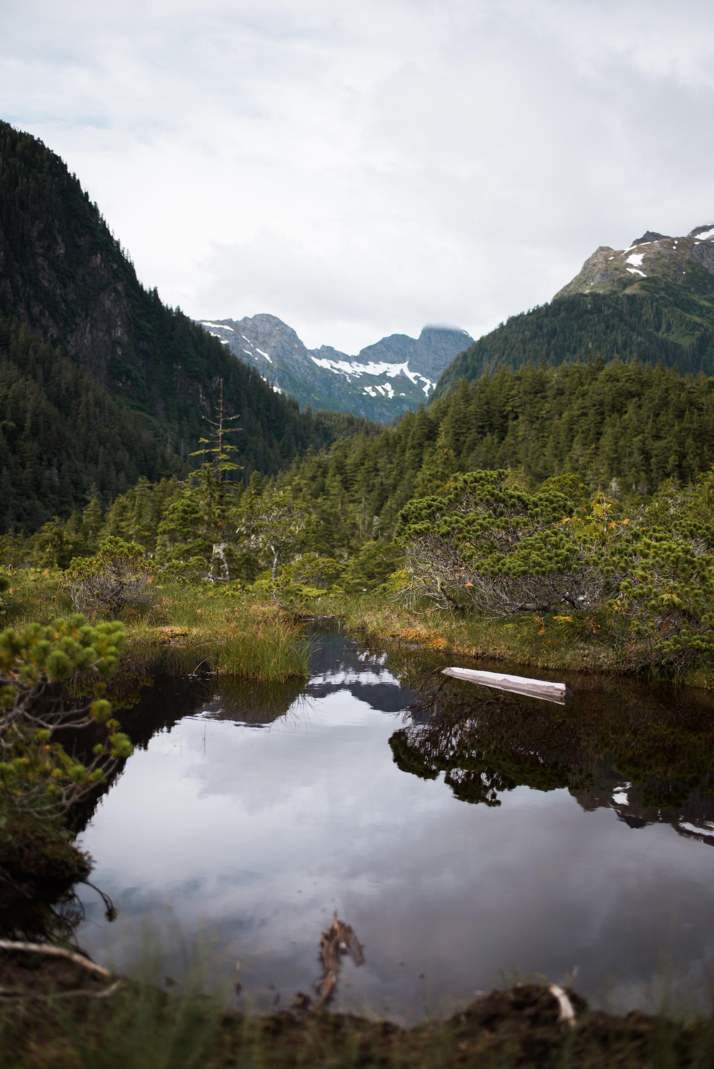 Beaver Lake-8986.jpg
