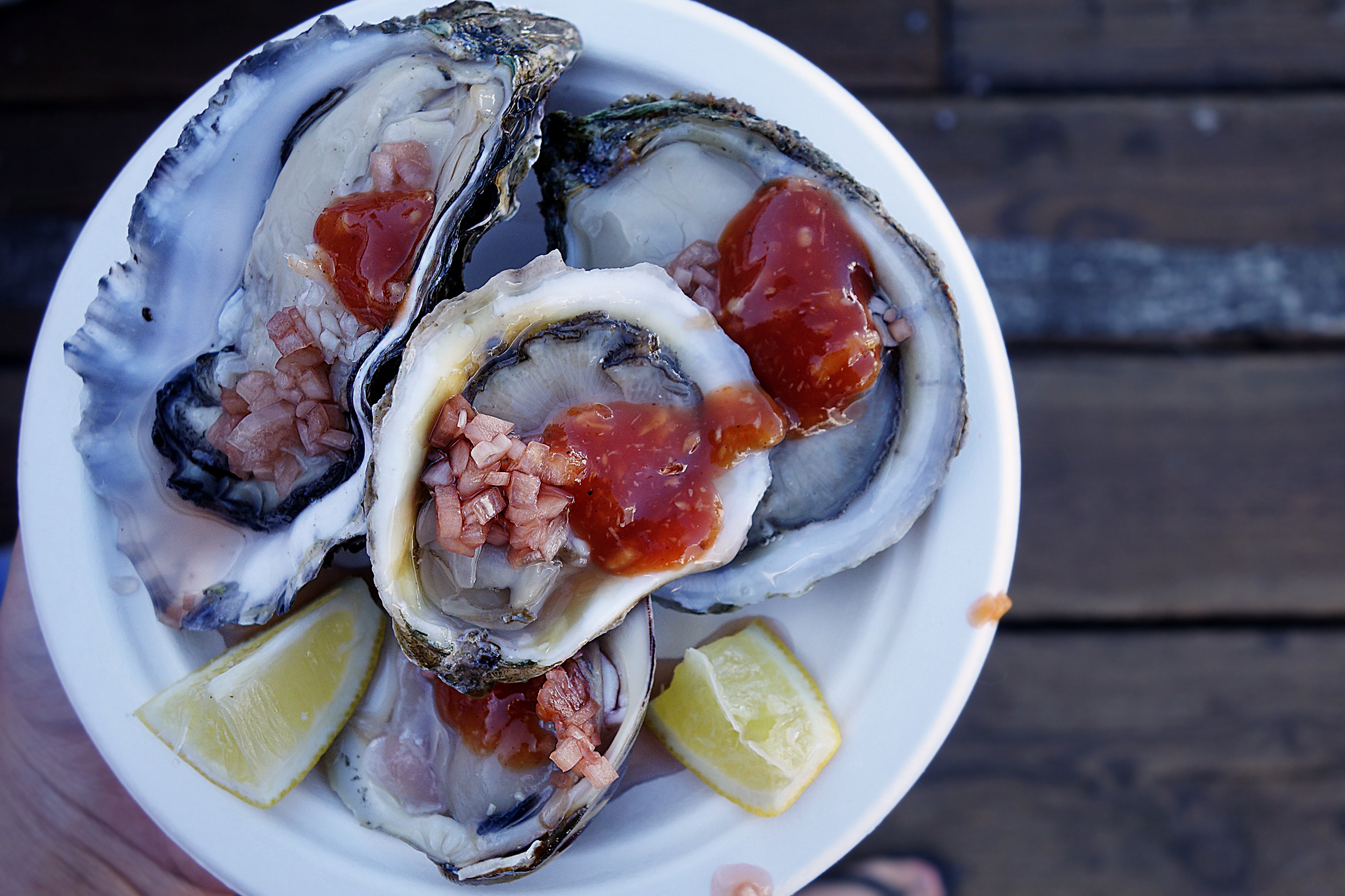 Best oysters I've ever had!