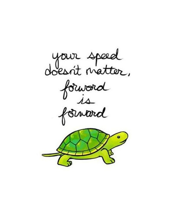 Happy Wednesday! Keep this positive thought in mind when you are working for something. It does not matter what speed you are going towards that goal, what matters if that you are moving forward!